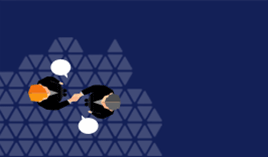 GERPA