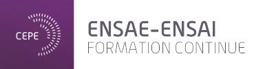 CEPE ENSAE-ENSAI, Formation continue